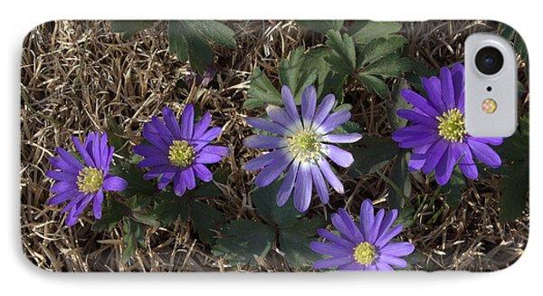 Purple Yard Flowers Phone Case by Liz Allyn