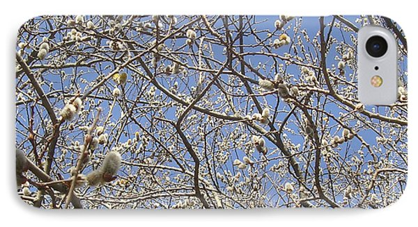 Pussywillows Bursting To Life IPhone Case by Roger Swezey