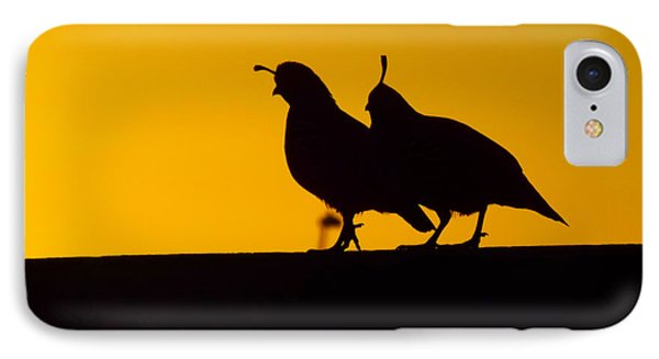 Quail At Sunset IPhone Case by Judi Saunders