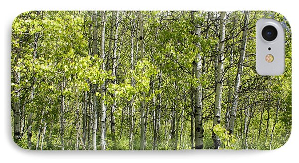 Quaking Aspens 2 Phone Case by Cynthia Powell