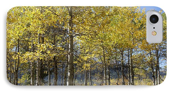 Quaking Aspens IPhone Case