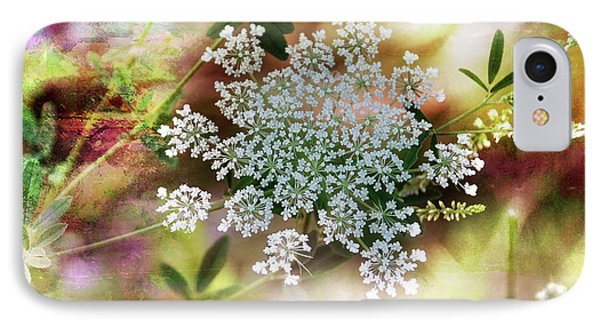 IPhone Case featuring the photograph Queen Annes Lace by Elaine Manley
