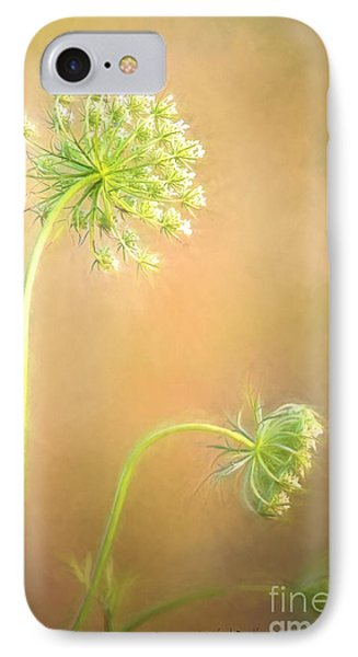 Queen Anne's Lace IPhone Case by Laurinda Bowling