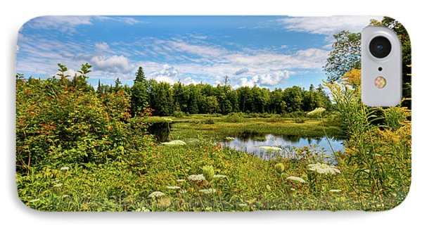 IPhone Case featuring the photograph Queen Anne's Lace On The Moose River by David Patterson