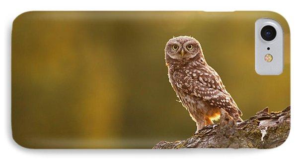 Qui, Moi? Little Owlet In Warm Light IPhone 7 Case by Roeselien Raimond