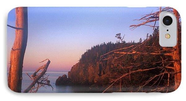 Quoddy Head Ocean Cliffs IPhone Case by John Burk
