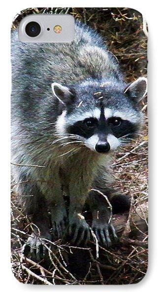 Raccoon  IPhone Case by Anthony Jones