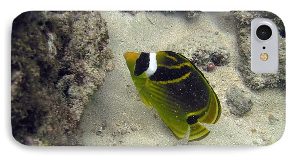 Raccoon Butterflyfish Phone Case by Michael Peychich