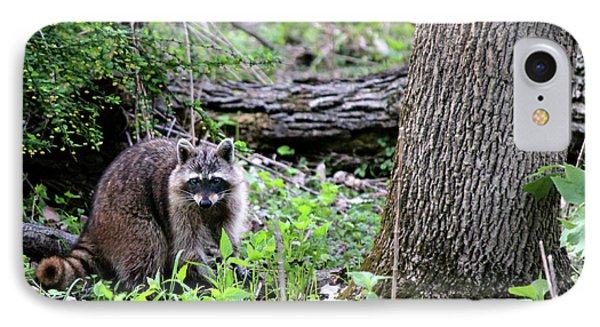 Raccoon IPhone Case by Codee Hart