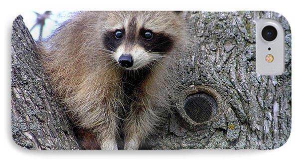 Raccoon Lookout IPhone Case