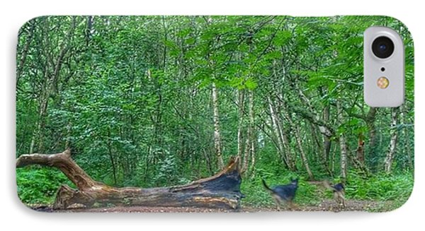 Racing Around The Downed Tree IPhone Case by Isabella F Abbie Shores FRSA