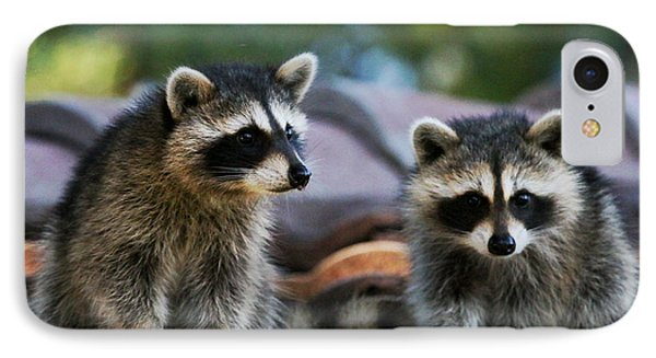 Racoons On The Roof IPhone Case
