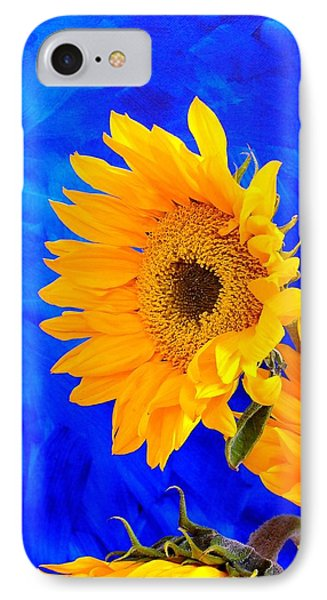 IPhone Case featuring the photograph Radiance by Brenda Pressnall