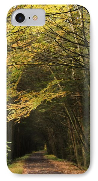 Rails To Trails IPhone Case by Lori Deiter