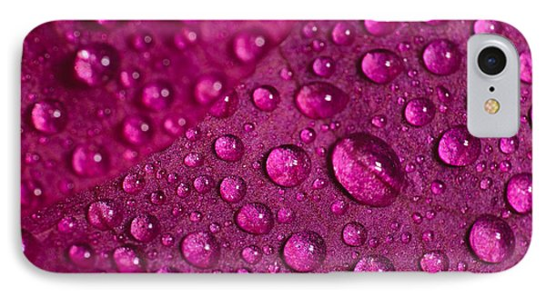 Rain And Bougainvillea Petals IPhone Case by Angelo DeVal