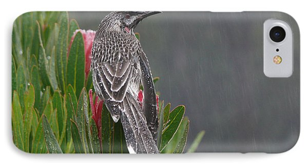 Rainbird IPhone Case by Evelyn Tambour