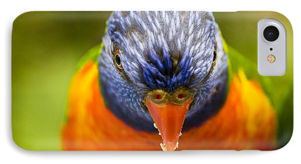 Rainbow Lorikeet IPhone Case by Avalon Fine Art Photography
