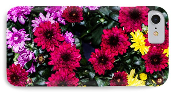 Rainbow Of Color Flowers IPhone Case