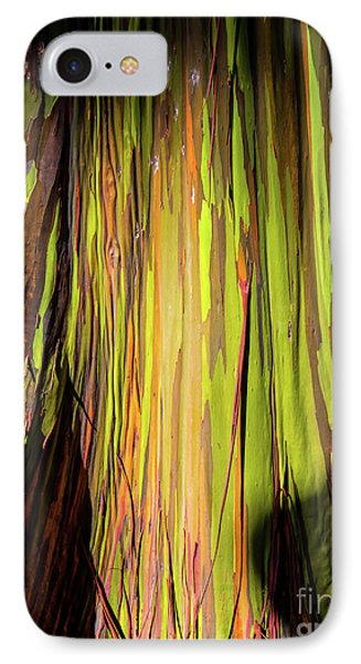 Rainbow Tree Phone Case by Jon Burch Photography