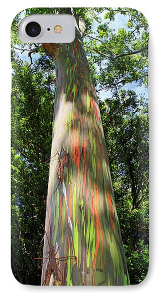 Rainbow Tree Phone Case by Pierre Leclerc Photography