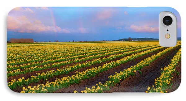 IPhone Case featuring the photograph Rainbows, Daffodils And Sunset by Mike Dawson
