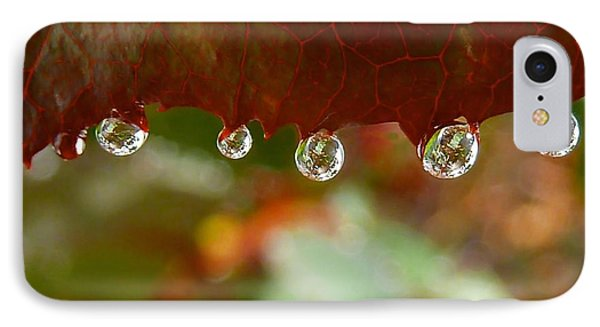 Raindrops On A Red Leaf Phone Case by Patricia Strand