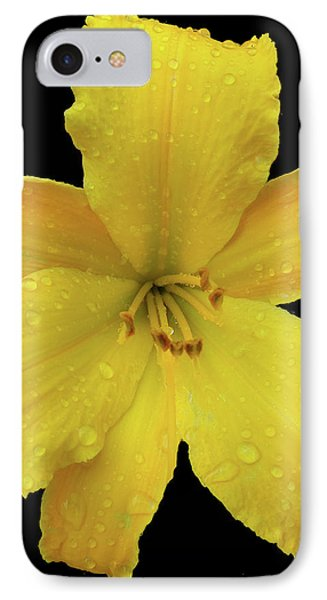Raindrops On A Yellow Daylily Phone Case by Tara Hutton