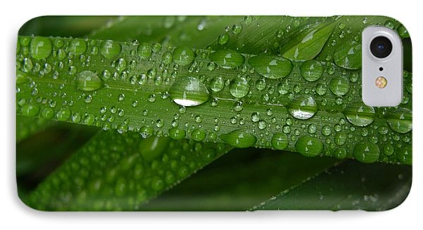 Raindrops On Green Leaves Phone Case by Carol Groenen
