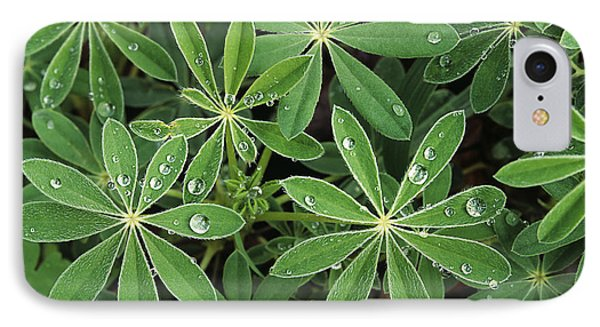 Raindrops On Lupine Phone Case by Greg Vaughn - Printscapes