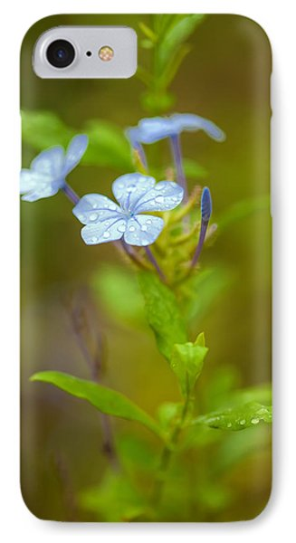 Raindrops On Petals IPhone Case by Az Jackson