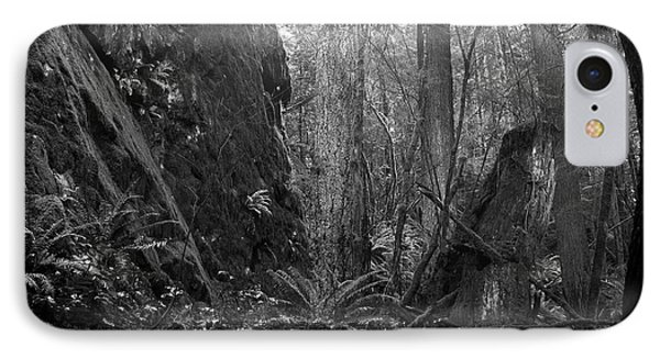 IPhone Case featuring the photograph Rainforest Black And White by Sharon Talson