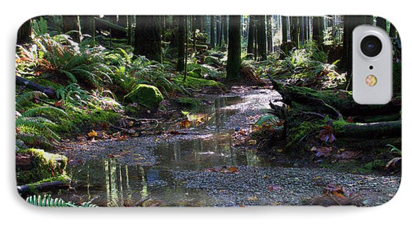 IPhone Case featuring the photograph Rainforest Trail 2 by Sharon Talson