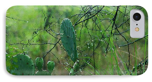 Rainy Day In Central Texas IPhone Case by Travis Burgess