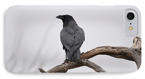 Rainy Day Raven IPhone Case