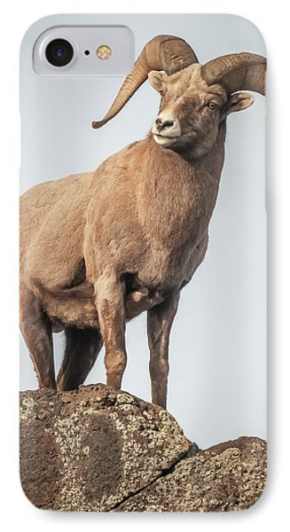 IPhone Case featuring the photograph Ram Of The Rio Grande by Britt Runyon