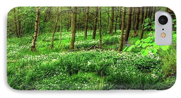 Ramsons And Bluebells, Bentley Woods IPhone Case