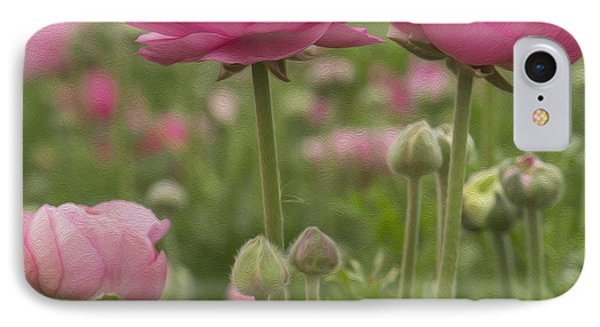 Ranunculus Flowers IPhone Case