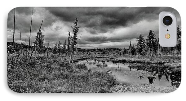IPhone Case featuring the photograph Raquette Lake Bog by David Patterson