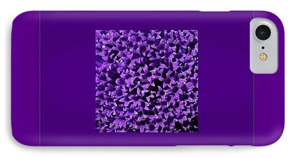 Rare Flower IPhone Case by Marija Djedovic
