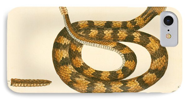 Viper iPhone 7 Case - Rattlesnake by Mark Catesby