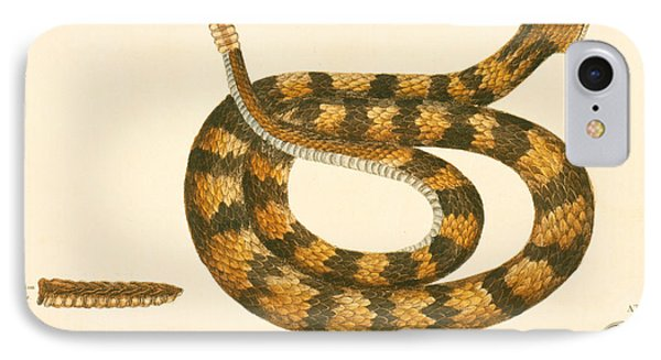 Rattlesnake IPhone 7 Case by Mark Catesby
