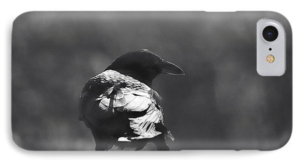IPhone Case featuring the photograph Raven In The Sun by Susan Capuano