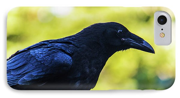 IPhone Case featuring the photograph Raven by Jonny D