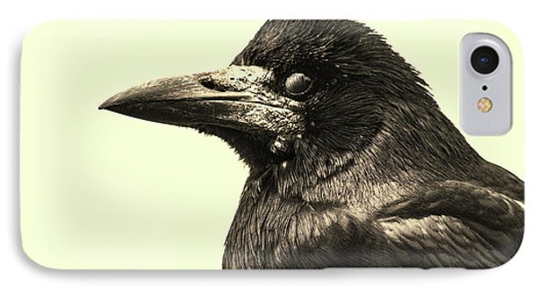 Raven IPhone Case by Martin Newman