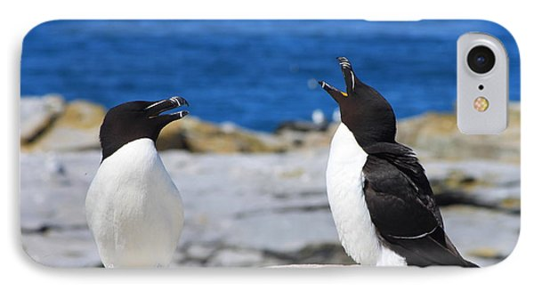Razorbills Calling On Island IPhone 7 Case