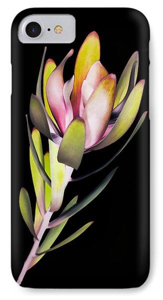 IPhone Case featuring the photograph Reach by John Hansen
