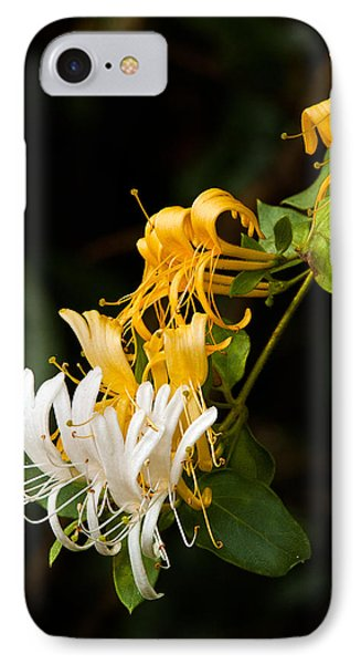 Reaching Phone Case by Christopher Holmes