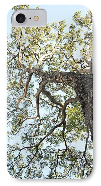 Reaching For The Sky Phone Case by Brandon Tabiolo - Printscapes