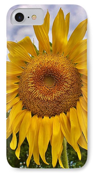 Reaching For The Sky Phone Case by Bruce Bley
