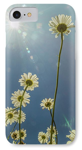 Reaching For The Sun IPhone Case by Garry McMichael